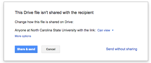 Share Drive file pop-up screenshot
