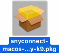 anyconnect macos x.x predeploy k9 package