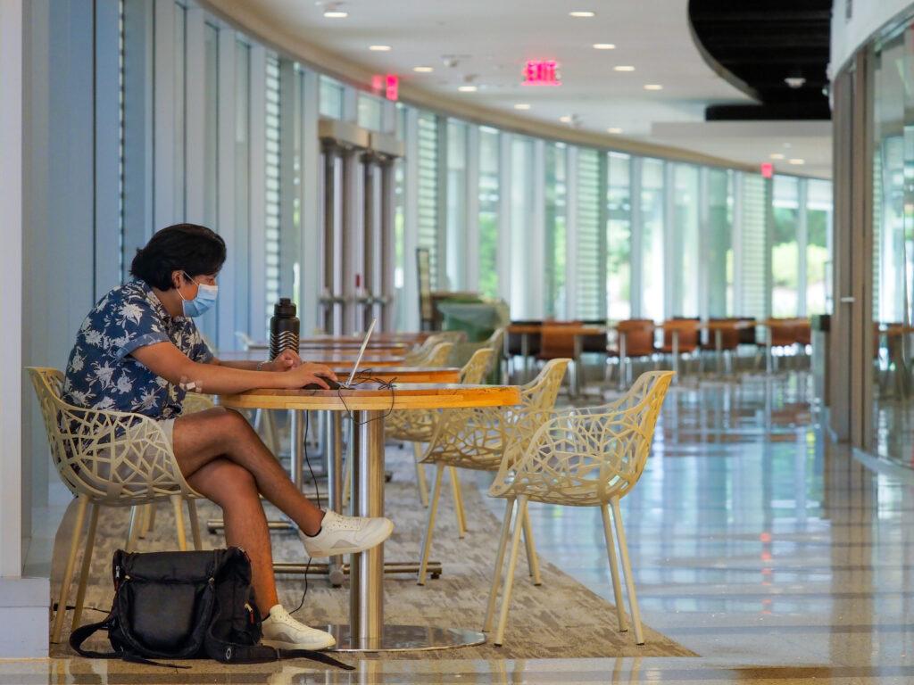 CNR student works on computer.